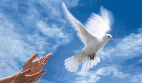 Un augurio di serenità a tutti voi. Dono prezioso di cui tutti noi abbiamo bisogno in un momento in cui, fra mille difficoltà, si rincontreranno nelle nostre case la speranza e la rinascita. Il Dirigente Scolastico